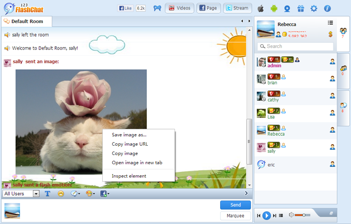 Image Transfer of 123FlashChat, Video Chat, Flash Chat, Chat Software, PHP Chat